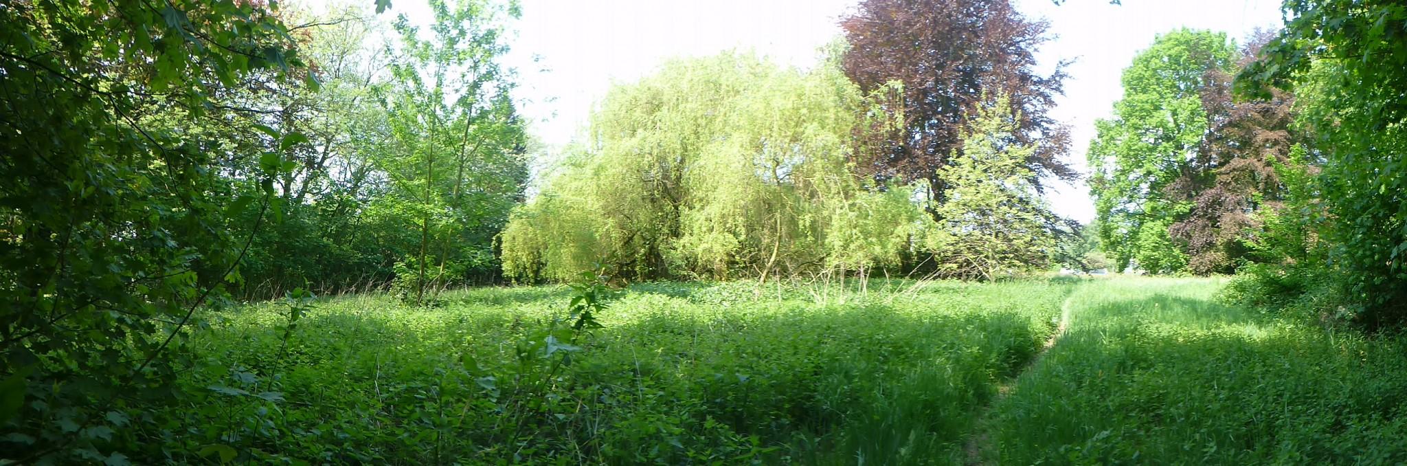 Parc des Grimonprés Fléron
