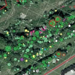 inventaire en plein géolocalisé TER-Consult