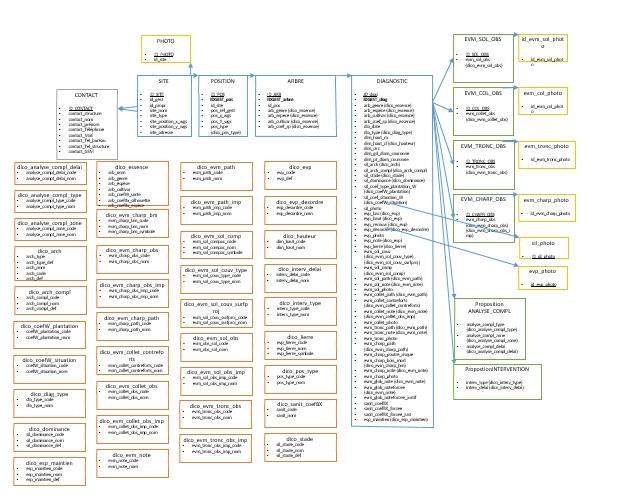 Diagnostic stabilité arbres d'alignement - SPRB - Schéma conceptuel BD