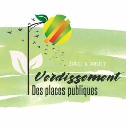 TER-Consult_Verdissement des places publiques